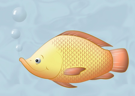 fish scales: Drawing of swimming Saint Peters fish. Stock Photo