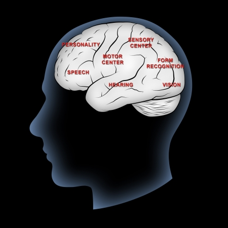 psychiatry: Human brain with functions labeled.