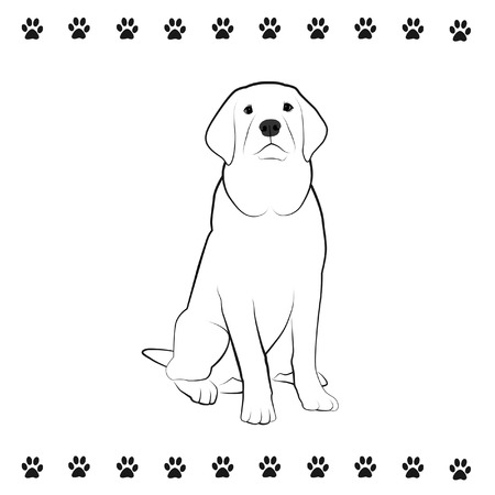 pooches: Line drawing of sitting dog  Stock Photo