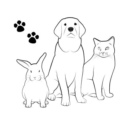 Line drawings of dog, cat, and rabbit.