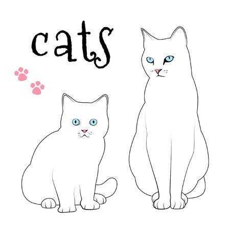 White mommy cat and kitten.