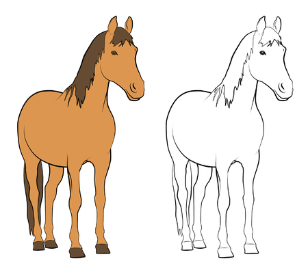 Line drawings of horse - Colored and Black and White