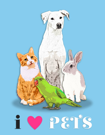 Dog, cat, rabbit and parrot illustration for pet lovers.