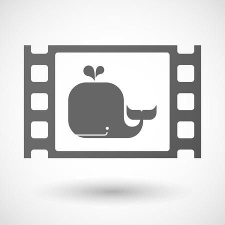 35mm: Illustration of a 35mm film frame with a whale