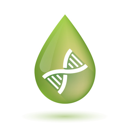 transgenic: Illustration of an isolated olive oil drop icon with a DNA sign Illustration