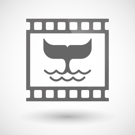 tail: Illustration of a photographic film icon with a whale tail Illustration