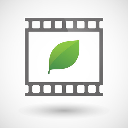 photographic film: Illustration of a photographic film icon with a leaf
