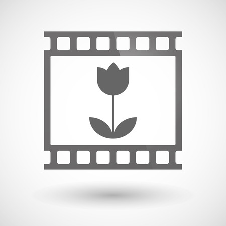 photographic film: Illustration of a photographic film icon with a tulip