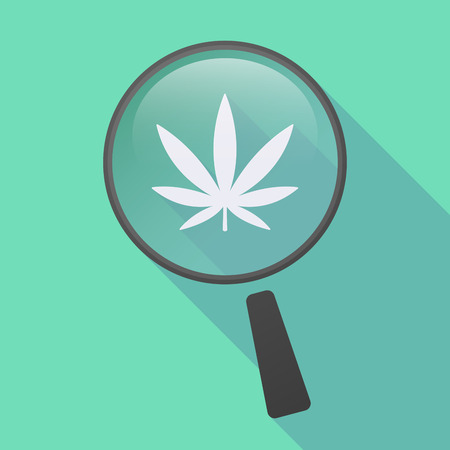 see weed: Illustration of a long shadow magnifier icon with a marijuana leaf