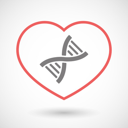 transgenic: Illustration of a line heart icon with a DNA sign Illustration