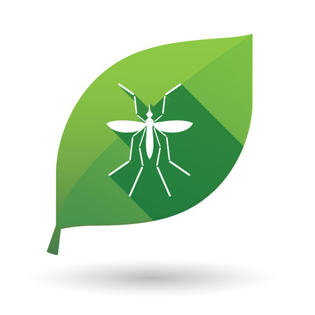 infected mosquito: Illustration of a Zika virus bearer mosquito  in a green leaf