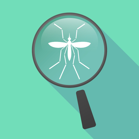 infected mosquito: Illustration of a Zika virus bearer mosquito  in a magnifier icon