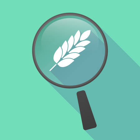 celiac: Illustration of a long shadow magnifier vector icon with  a wheat plant icon
