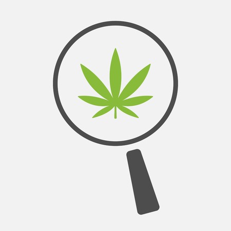 see weed: Illustration of an isolated magnifier icon with a marijuana leaf Illustration
