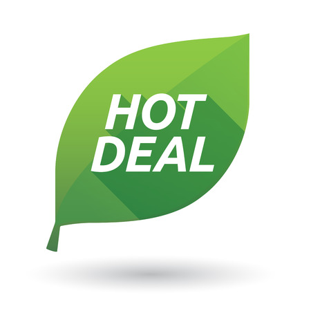 Illustration of an isolated green leaf ecological icon with    the text HOT DEAL Illustration