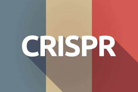 clustered: Illustration of a long shadow France flag with  the clustered regularly interspaced short palindromic repeats acromym CRISPR Illustration