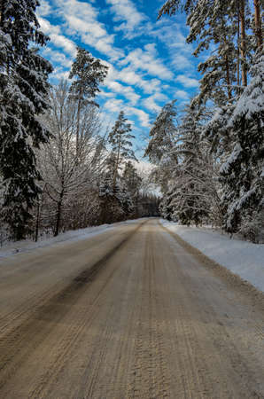 Winter road through the forest clear day after snowfall
