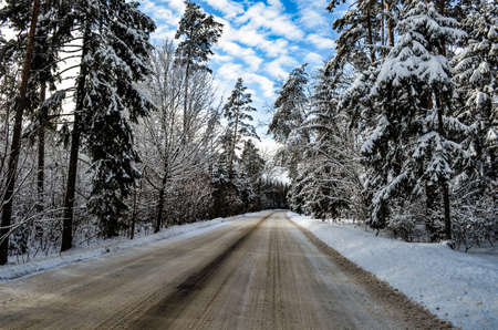 Winter road through the forest clear day after snowfall on a clear day