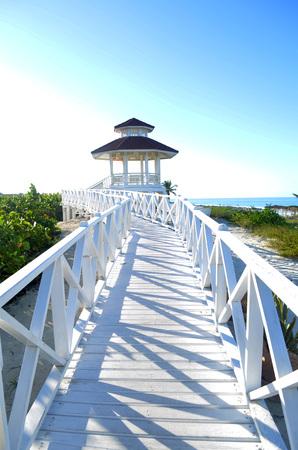 love dome: Beach weeding love
