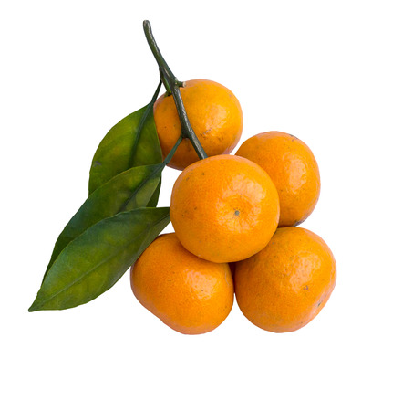 Ripe tangerines or mandarin isolated on white background photo