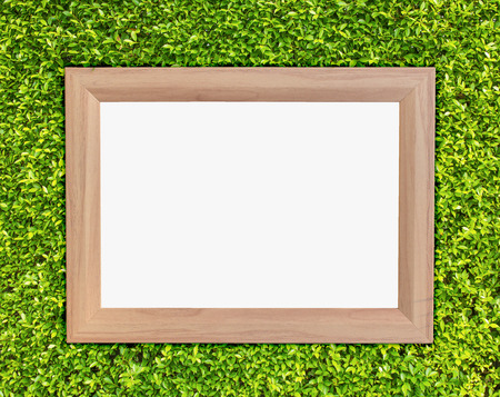 Wooden frame on green ivy background photo