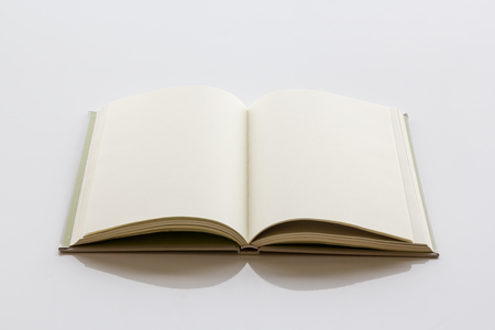 bookish: Opened book with blank pages on a white background