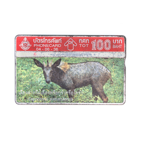 Thailand - June 4, 1992 : Thailand telephone card picture of capricornis sumatraensis. Very popular nearly 20 years ago. Current deprecated