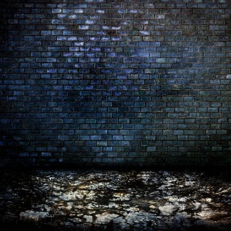 gaol: Dark room with cement floor and brick wall background