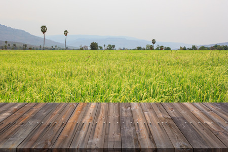 Vintage wooden floor texture with rice field background.