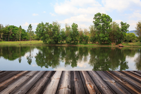 old wood floor: Old wood floor with beautiful landscape background.