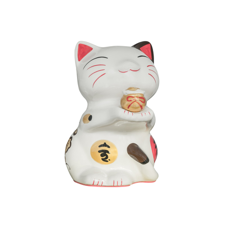 Japanese lucky cat isolated on white background