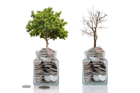Money growth concept profit and loss from investment on white background.