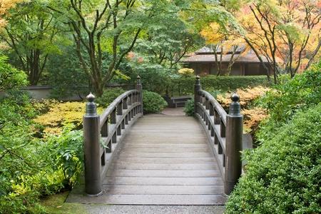 autumn motif: Wooden Foot Bridge in Japanese Garden in the Fall