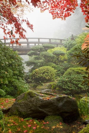 Rock en Brug onder de Maple Tree op Japanse Tuin Stockfoto