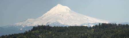 snow capped mountain: Mount Hood and Tree Landscape in Oregon Panorama Stock Photo