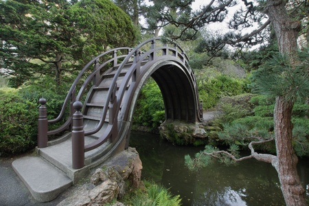 japanese tea garden: Wooden Bridge at Japanese Garden in San Francisco Golden Gate Park 2