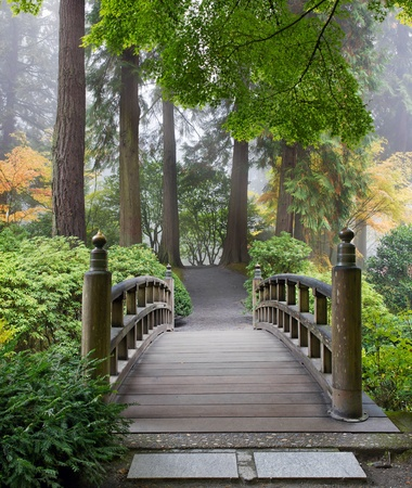 Foggy Morning by Wooden Foot Bridge at Japanese Garden in Autumn photo
