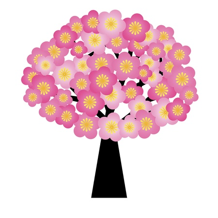 new year card: Spring Cherry Blossom Flowers Blooming on Tree Illustration Isolated on White Background Stock Photo