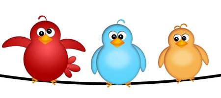 oiseau dessin: Trois oiseaux sur un fil Illustration dessin animé isolé sur fond blanc