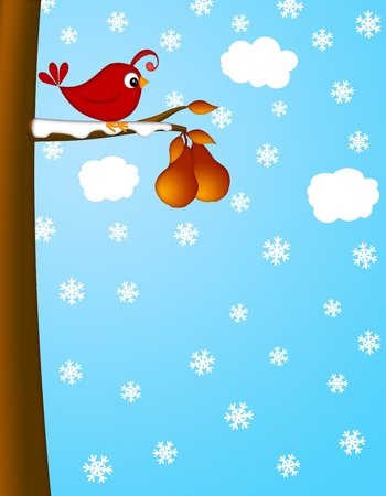 pear tree: Christmas Partridge on a Pear Tree Winter Scene Illustration