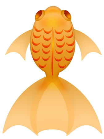Fancy Goldfish Top View Clipart Illustration Isolated on White Background illustration