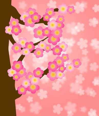 new year card: Flowering Cherry Blossom Tree in Spring Season Illustration