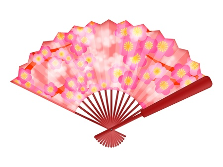 Chinese Folding Fan with Cherry Blossom Flowers in Spring Illustration Isolated on White Background