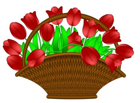 ハッピー イースター日赤いチューリップ花のイラスト白い背景で隔離のバスケットを編んだ