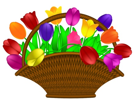 weaved: Weaved Basket of Happy Easter Day Colorful Tulips Flowers Illustration Isolated on White Background