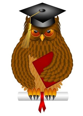buho graduacion: B�ho sabio antiguo, con plumas y garras con gorra de graduaci�n Diploma Holding ilustraciones de libros aislados en el fondo blanco