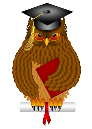 college professor: Wise Old Owl with Feathers and Claws Wearing Graduation Cap Holding Diploma Book Illustration Isolated on White Background