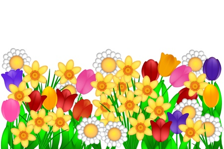 Spring Flowers with Tulips Daffodils Daisies Illustration Isolated on White Background illustration