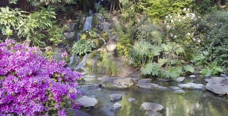 Waterfall and Creek at Crystal Springs Rhododendron Garden in Portland Oregon Panorama photo