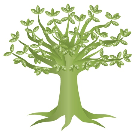 Green Eco Tree with Green Leaves Illustration Isolated on White Background